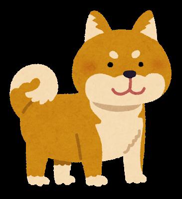 柴犬ユーザー